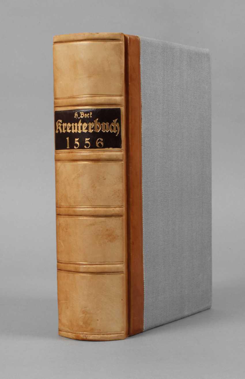 Bock's Herbal Book 1556 - photo 1
