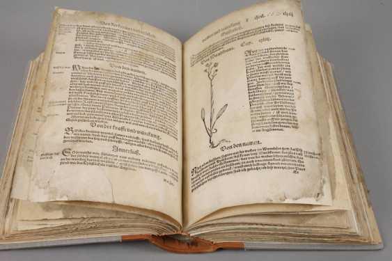 Bock's Herbal Book 1556 - photo 4