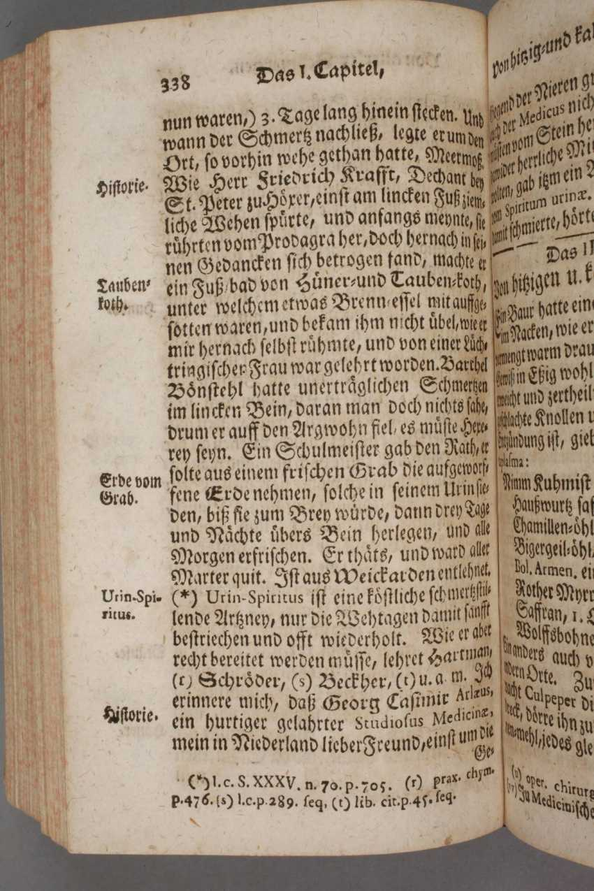 Paullinis Dreck-Apotheke 1748 - photo 3