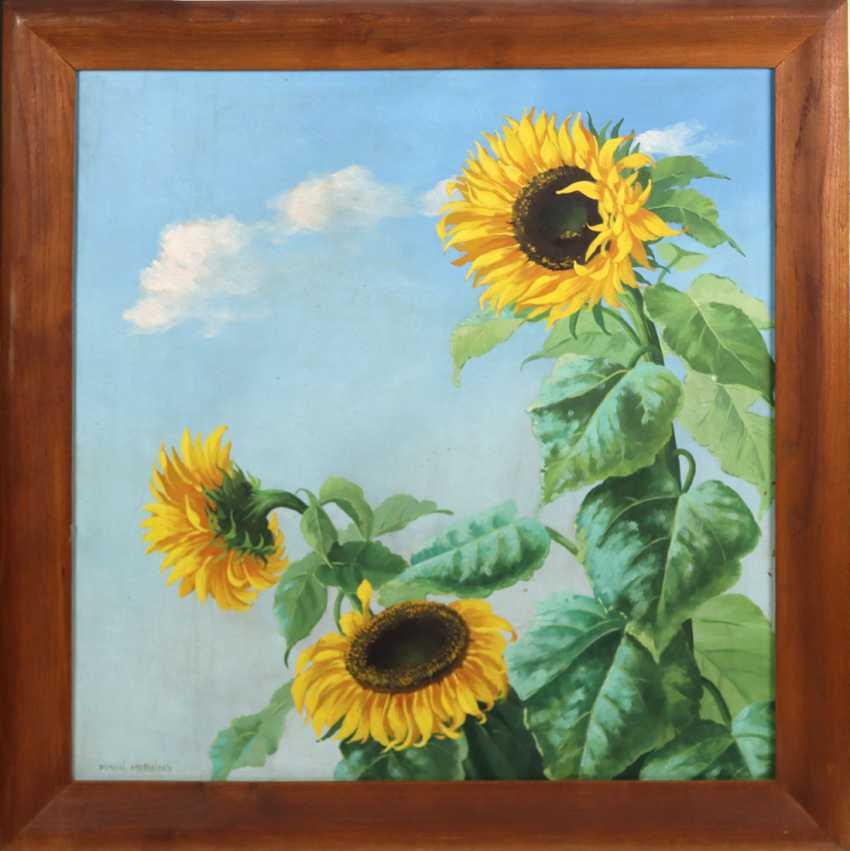 Sunflower Herzing, Minni - photo 1