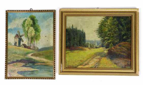 2 landscapes - photo 1