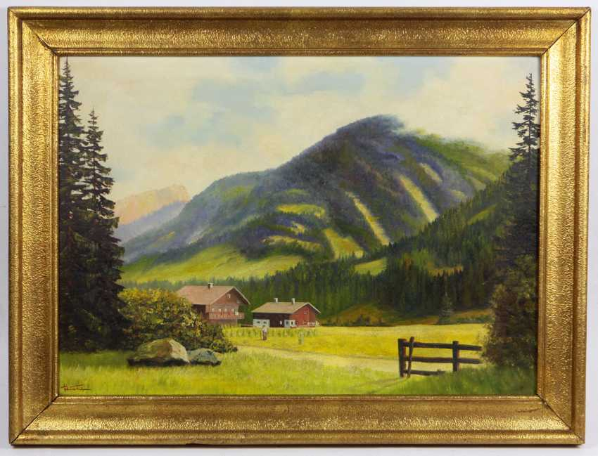 Early summer in the mountains - judge - photo 1