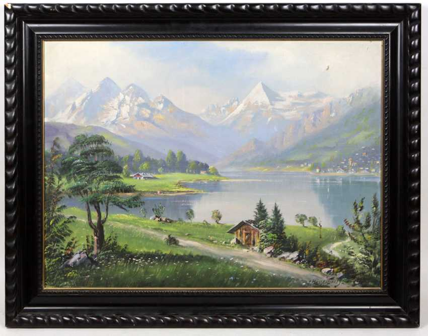 Alpine view of the lake Hassel book - photo 1