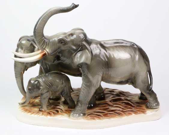 large group of elephants - photo 1