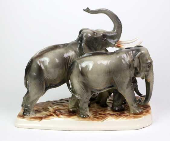 large group of elephants - photo 3