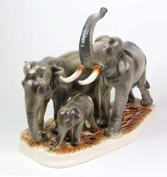 large group of elephants - photo 4