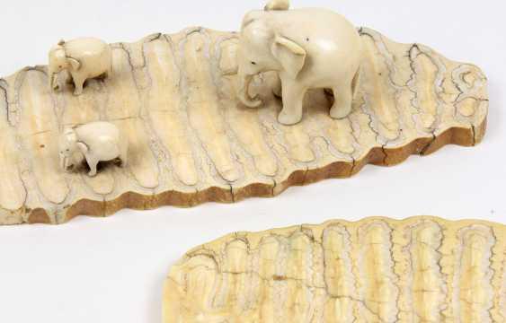 Elephant group - photo 2