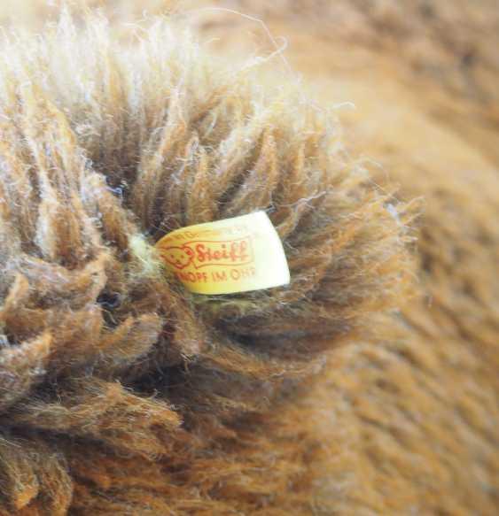 Steiff - Großer Teddybär. - photo 2