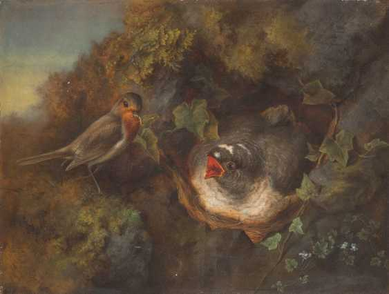 Bird feeding - photo 1
