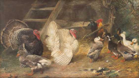 Poultry farm - photo 1