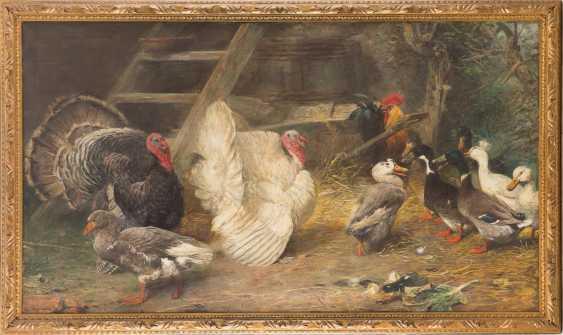 Poultry farm - photo 2