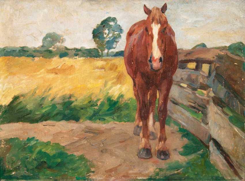 Standing horse - photo 1