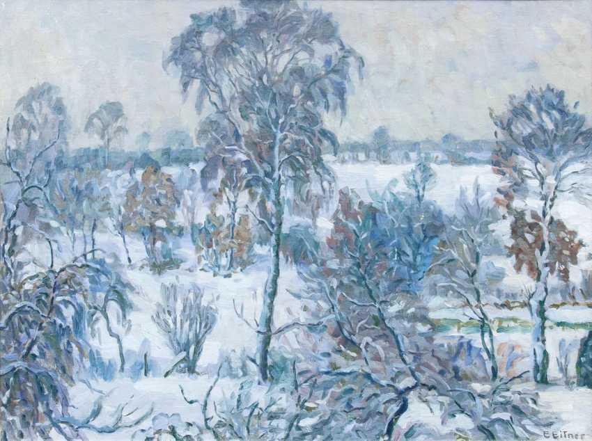 Winter in Hummelsbüttel - photo 1