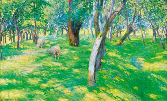 Sheep in the light forest - photo 1