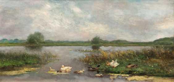 Ducks on the shore - photo 1