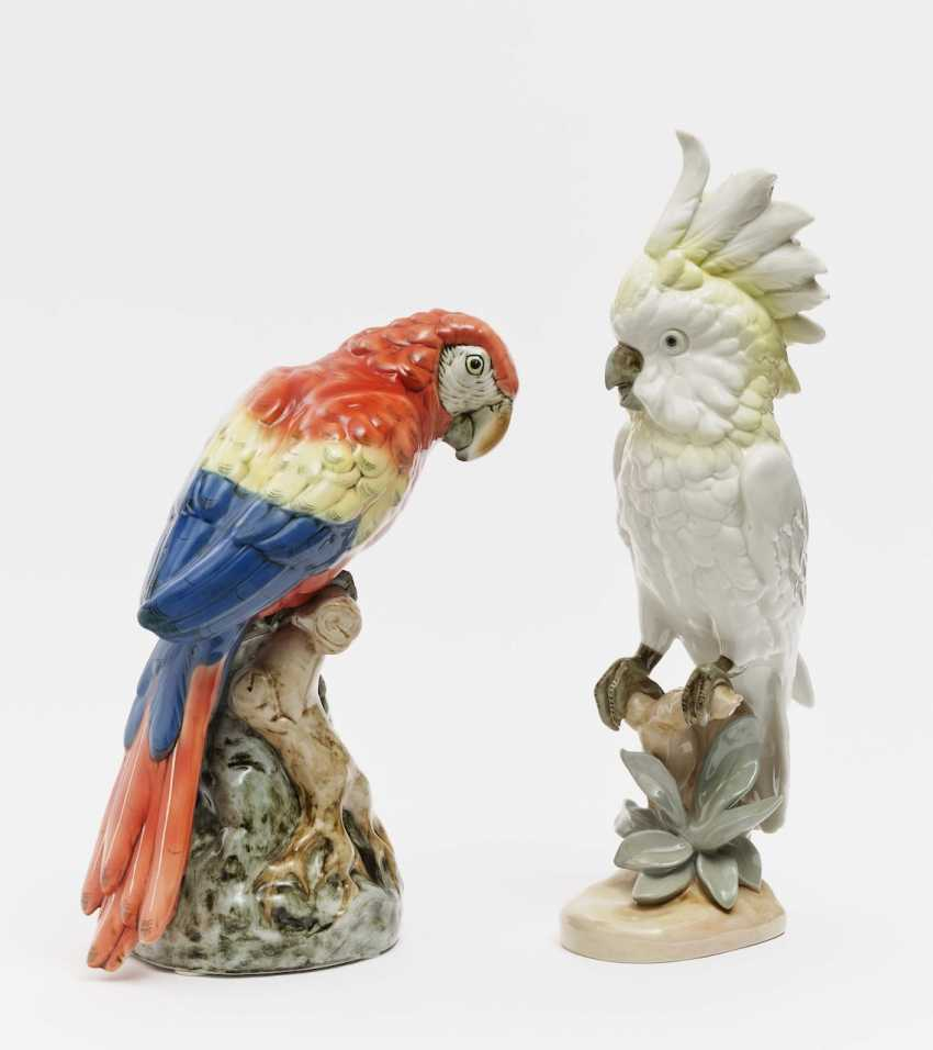 Two parrots - photo 1