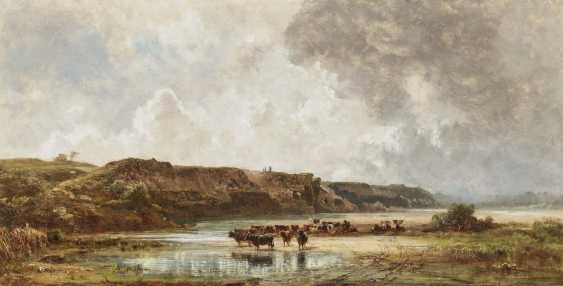 Cattle in the Isar bed - photo 1