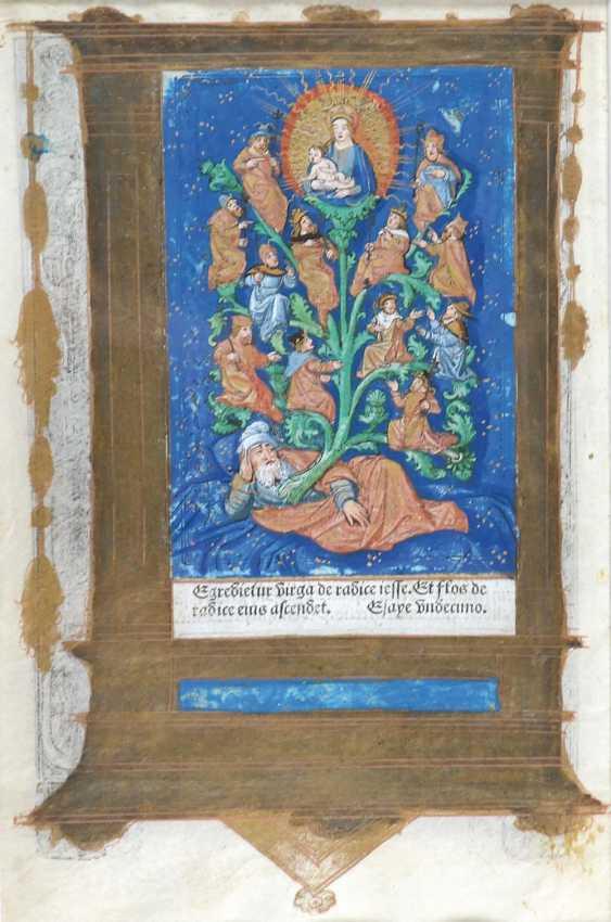 Abraham's Tree of Life. - photo 1