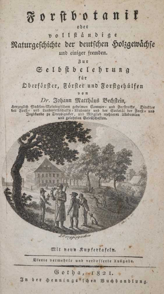 Bechstein, JM - photo 1