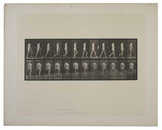 EADWEARD MUYBRIDGE (1830–1904) - photo 3