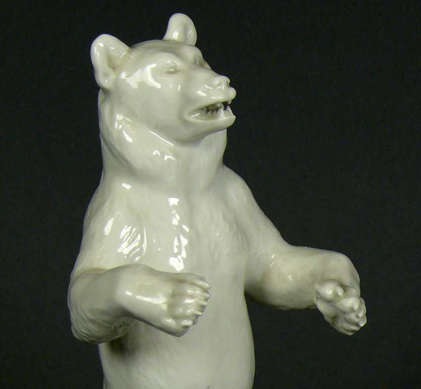 Bear of Berlin - photo 2