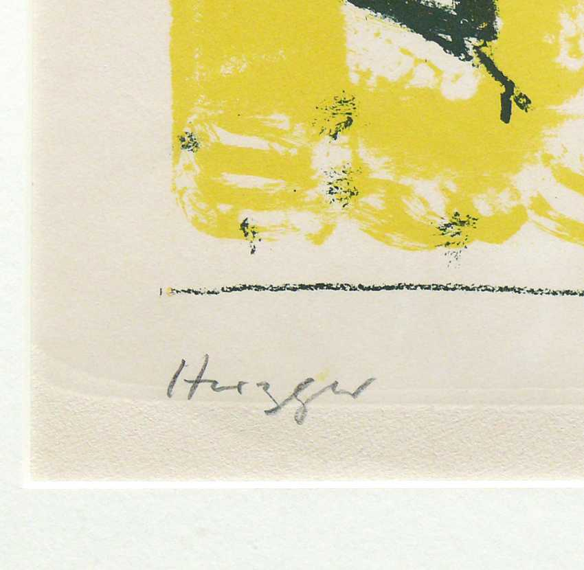 Herzger, Walter Prof. - photo 3