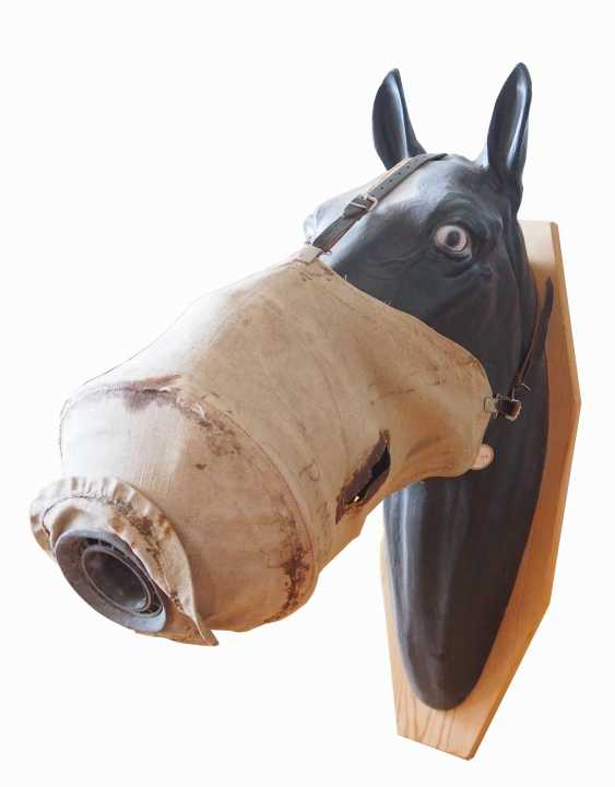 Russia: horse gas mask. Linen cloth with a centrally integrated filter - photo 2