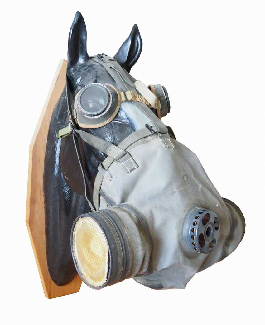 Soviet Union: horse gas mask. Linen-like cloth - photo 1