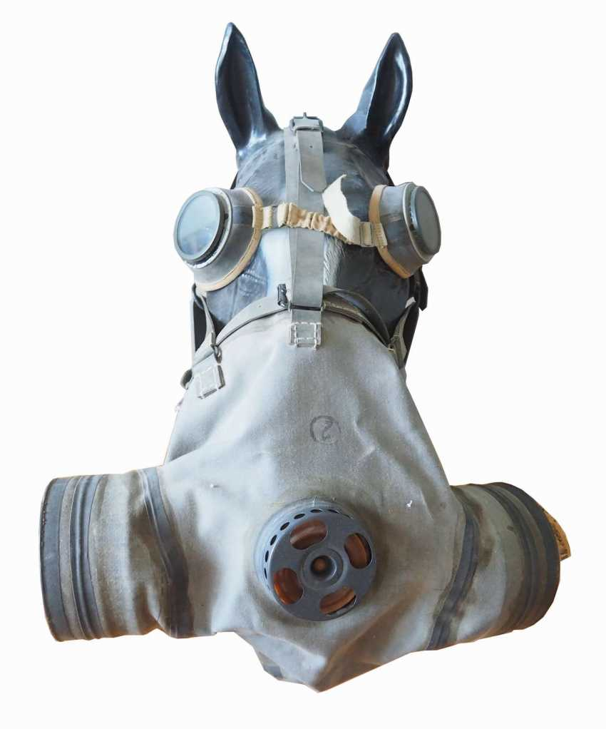 Soviet Union: horse gas mask. Linen-like cloth - photo 2