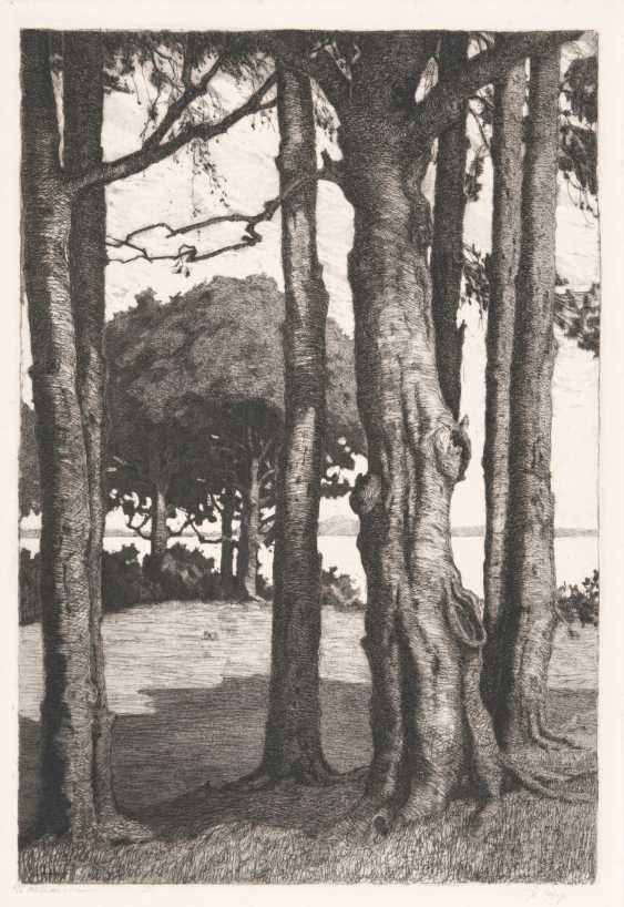 Carl Arp (Kiel 1867 - Jena, 1913). Trees on a lake - photo 1