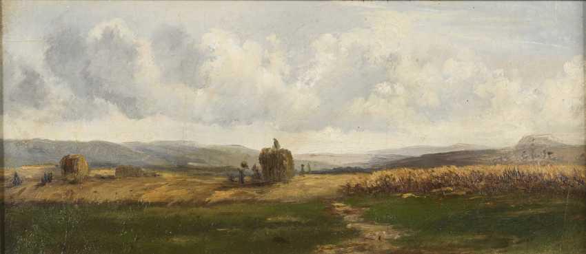 Small harvest landscape - photo 1