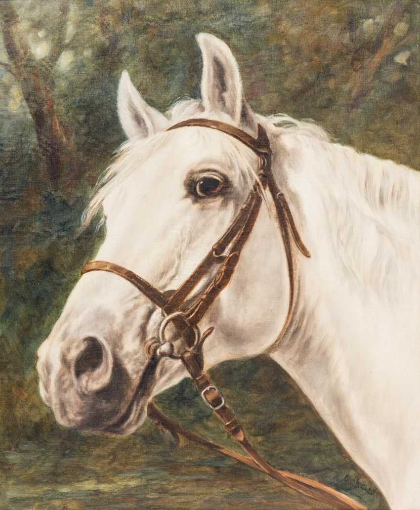 "ERHARDT (painter 20. Century), ""head of a white horse in front of the forest"", - photo 1"