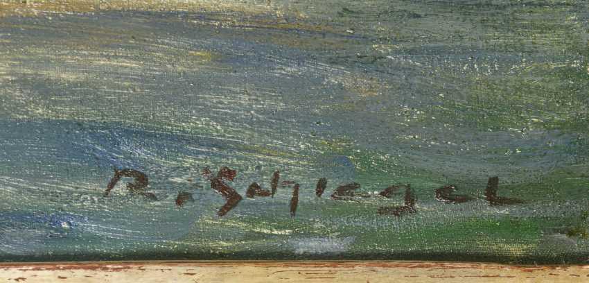 SCHLEGEL, R. - photo 2