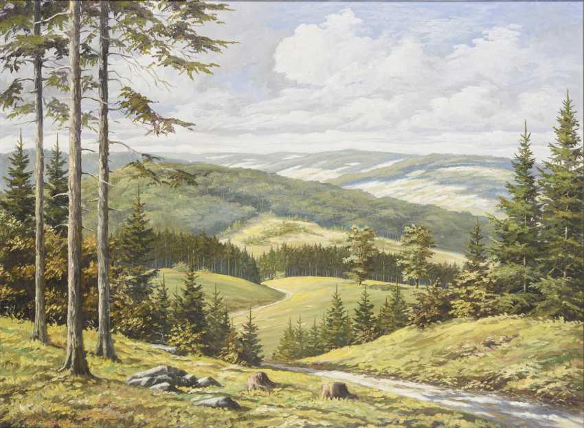 Indistinctly signed: Thuringian landscape - photo 1