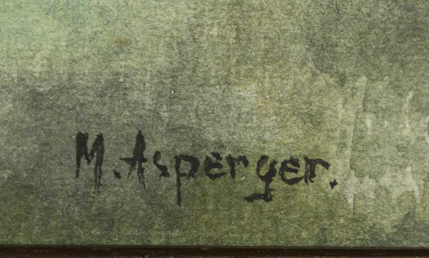 ASPERGER, Max (1864 Apolda - 1924 Gotha) - photo 2