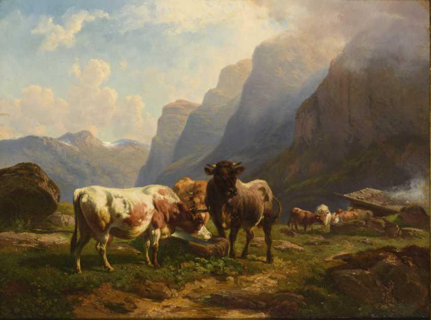 Romantic alpine landscape with cows - photo 1