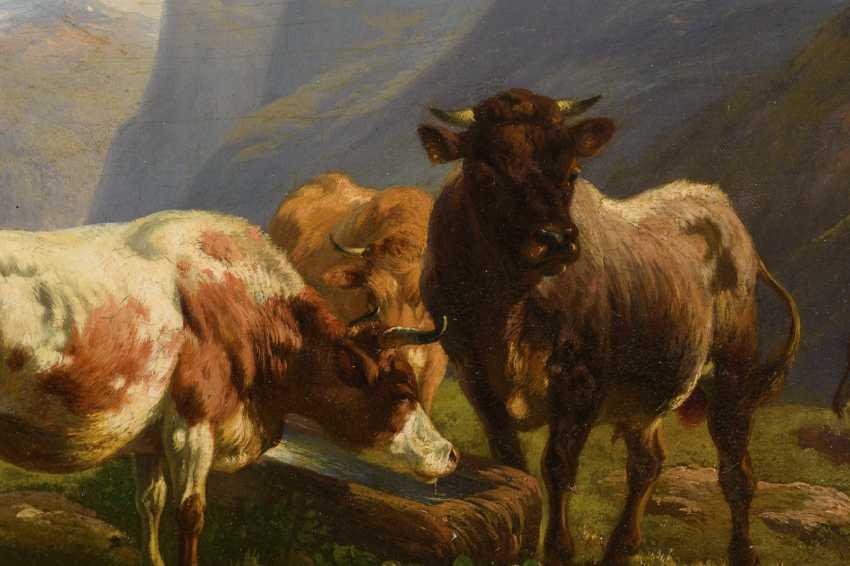Romantic alpine landscape with cows - photo 2