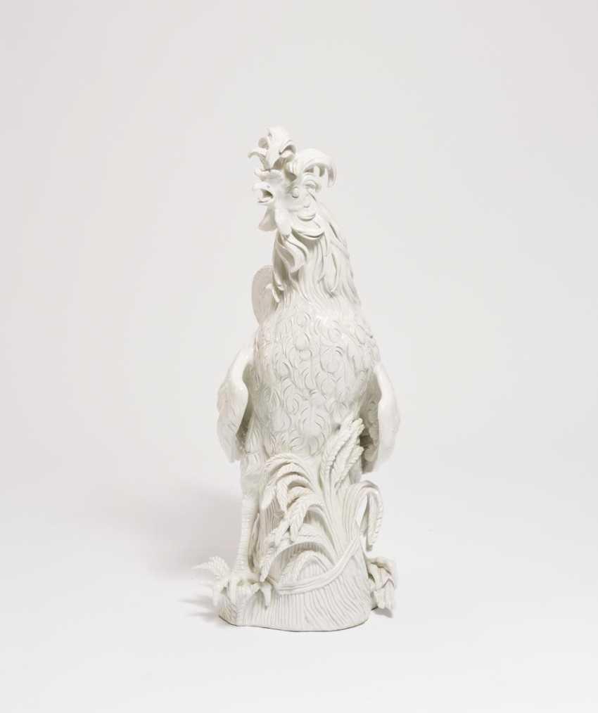 Big Paduan Rooster - photo 3