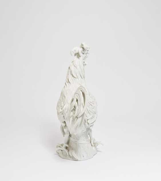 Big Paduan Rooster - photo 4