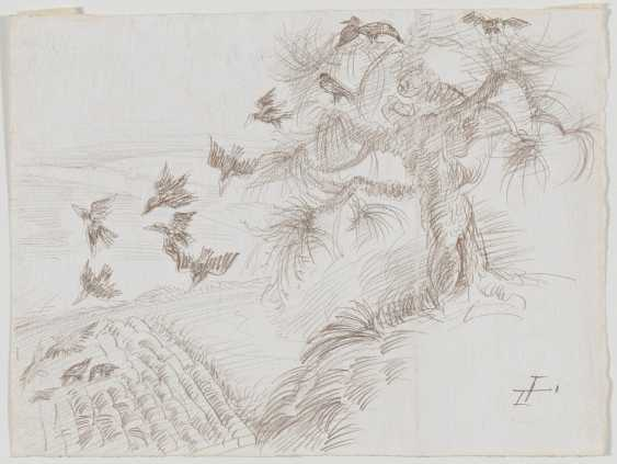Old tree with ravens (crows) - photo 2