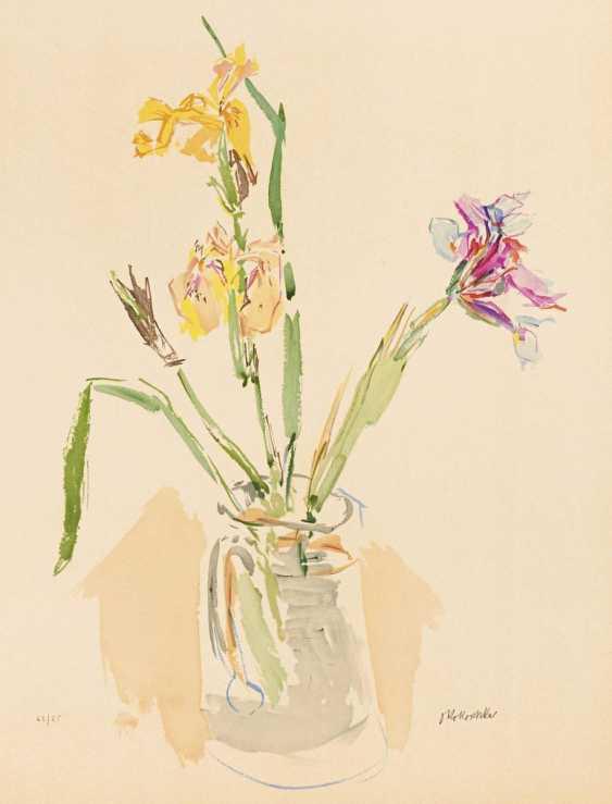 Yellow and purple irises - photo 1