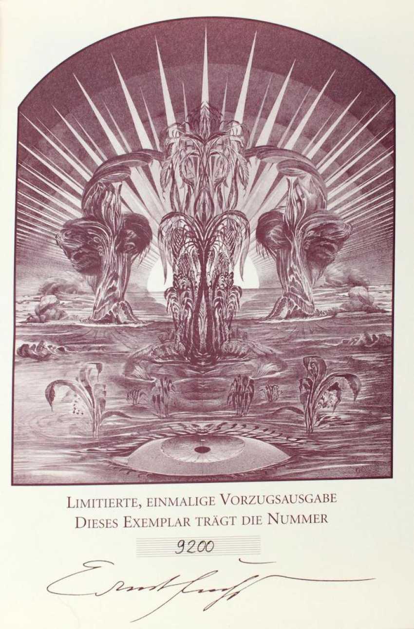 Heilige Schrift, Die,  - photo 2