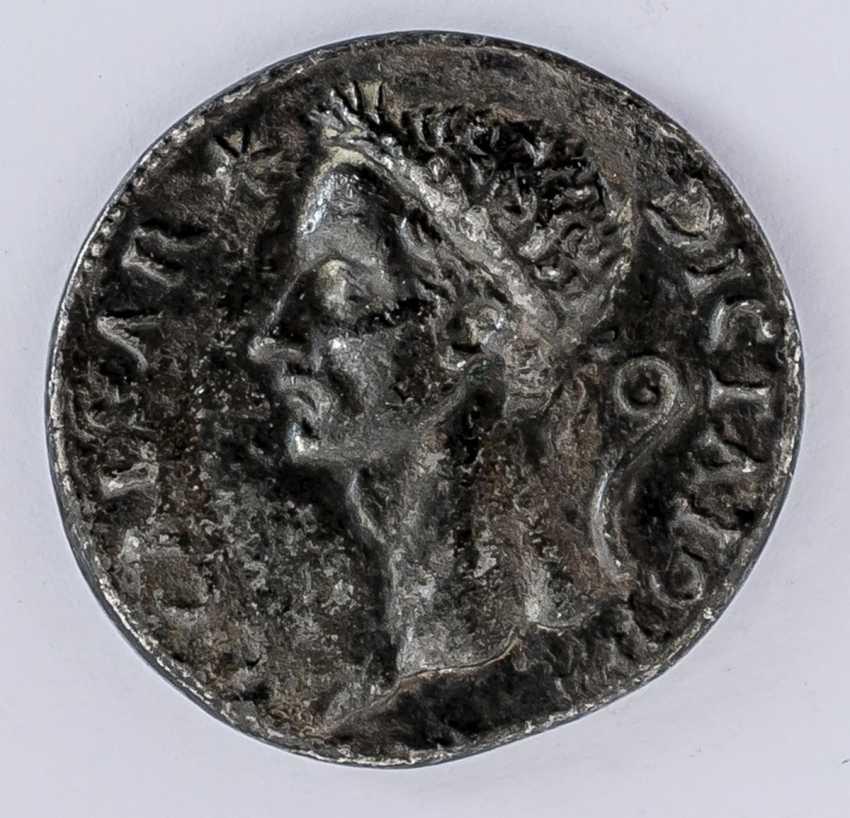 Caesar - photo 1