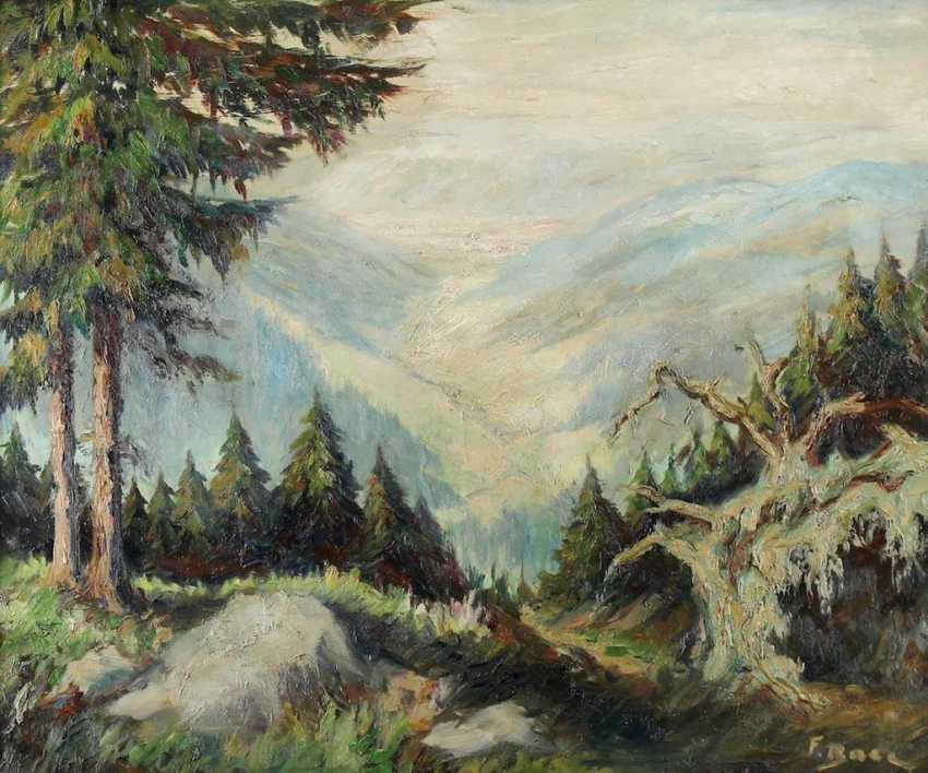 Baer, Fritz - photo 1