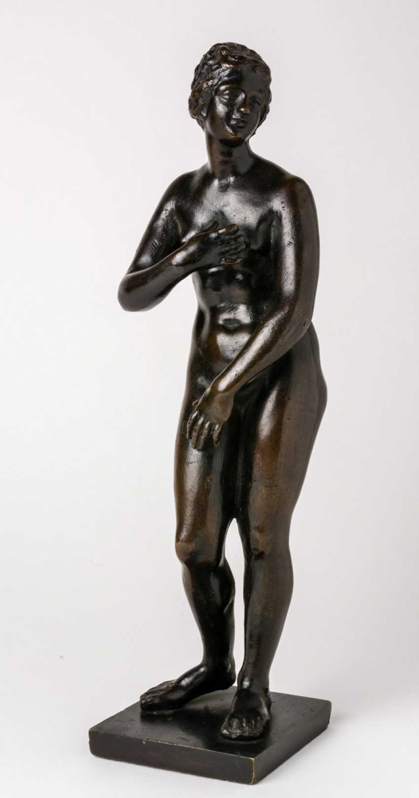 Venus of Medici - photo 1