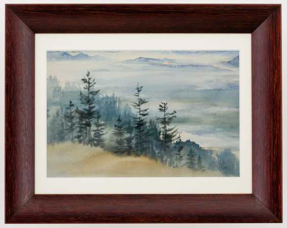 Alpine Painter - photo 2