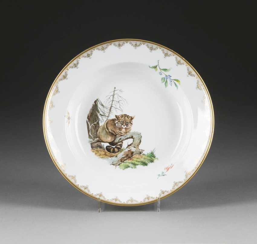 SOUP PLATE WITH WILD CAT - photo 1