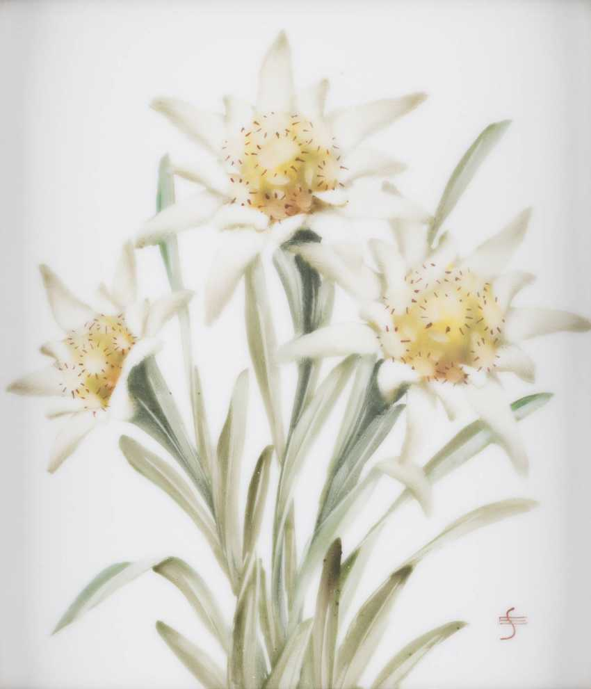 Porcelain picture plate 'EDELWEISS' German, Rosenthal, 20. Century - photo 1