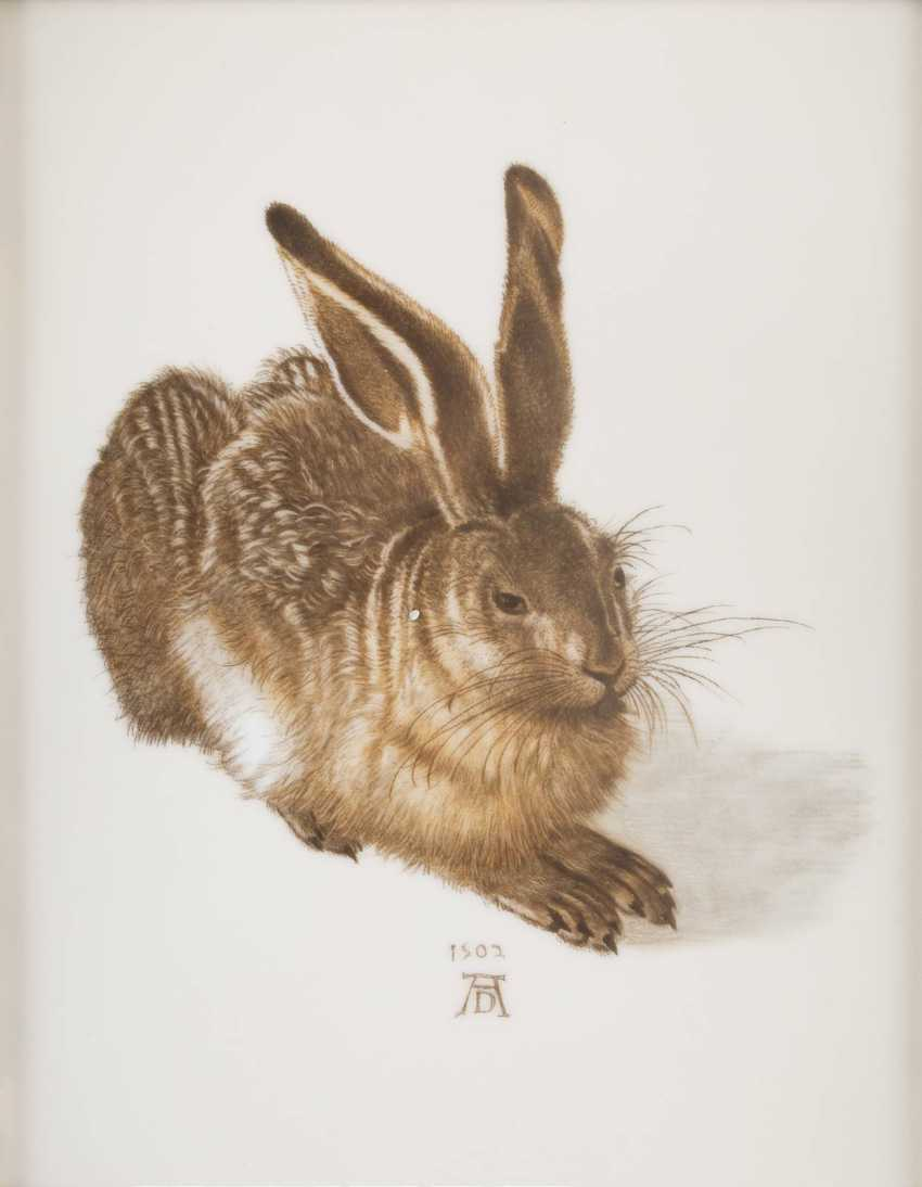 Porcelain picture plate 'a young hare AFTER ALBRECHT DÜRER, German, Rosenthal, 2. Half of the 20. Century - photo 1