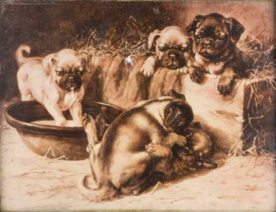 PORCELAIN PICTURE PLATE 'PLAYFUL PUPPIES' - photo 1